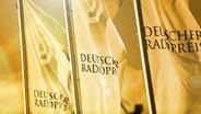 Gala zum Deutschen Radiopreis © Deutscher Radiopreis Foto: Philipp Szyza